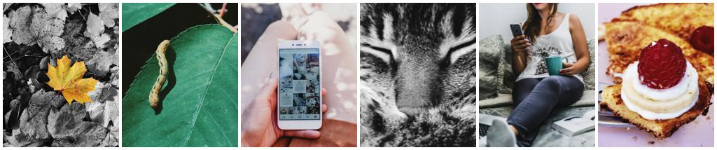 online stoomcursus smartphone fotografie